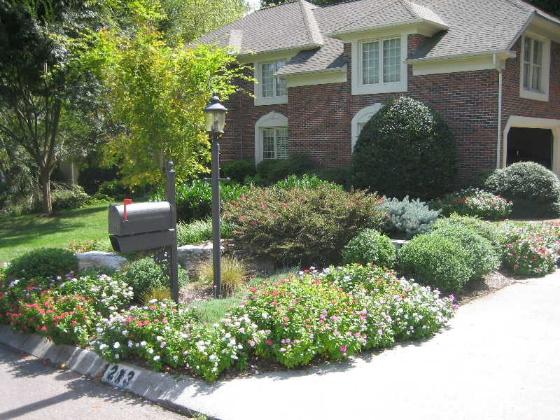 Landscaping in Front